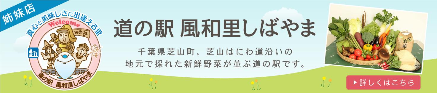 「道の駅 風和里しばやま」千葉県芝山町、芝山はにわ道沿いの地元で採れた新鮮野菜が並ぶ道の駅です