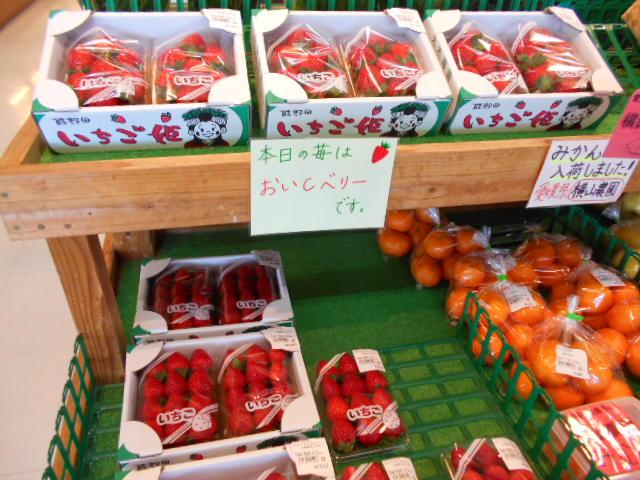 イチゴの販売が開始しました!