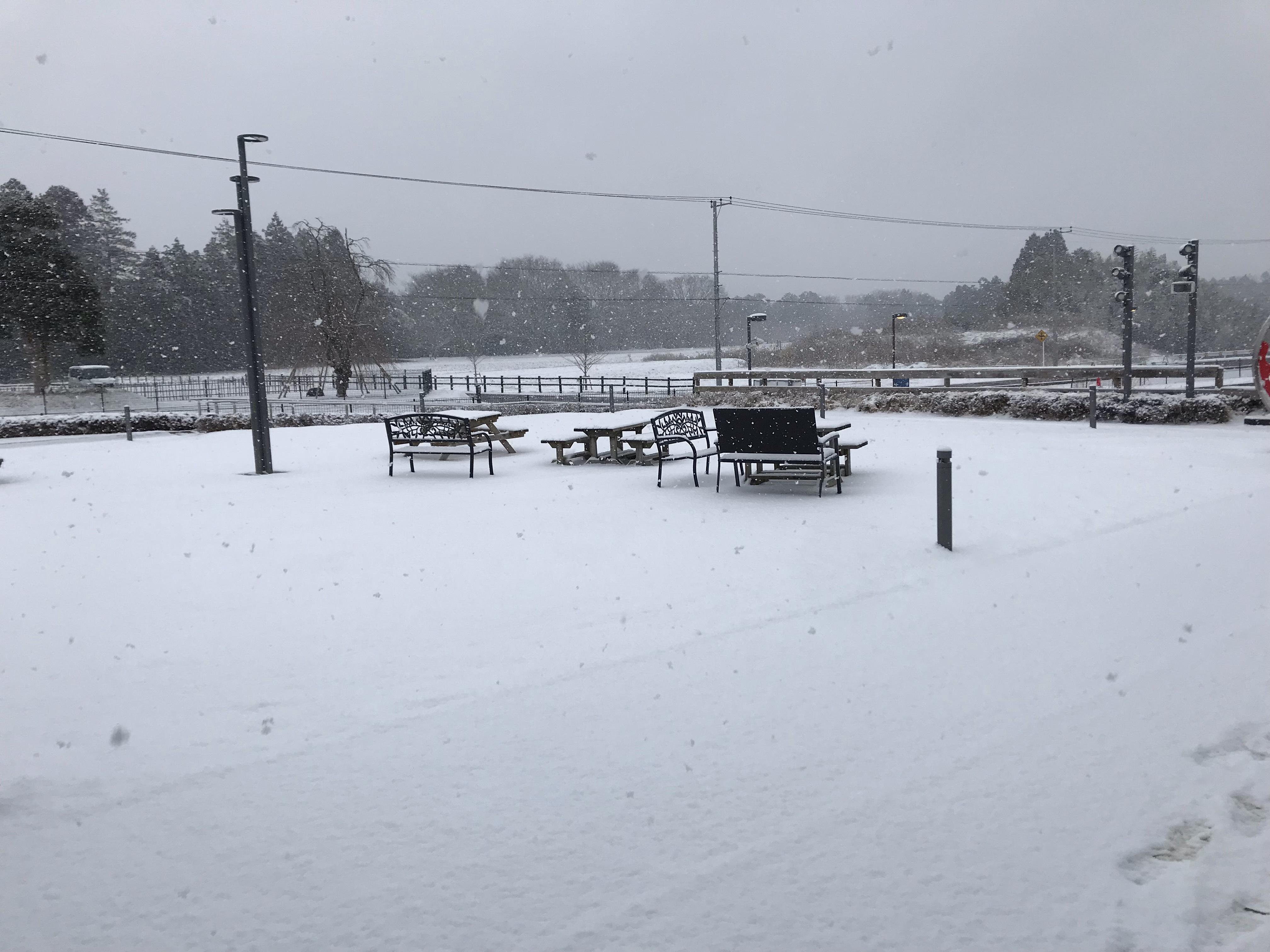 レストランは雪の為、本日休店となります